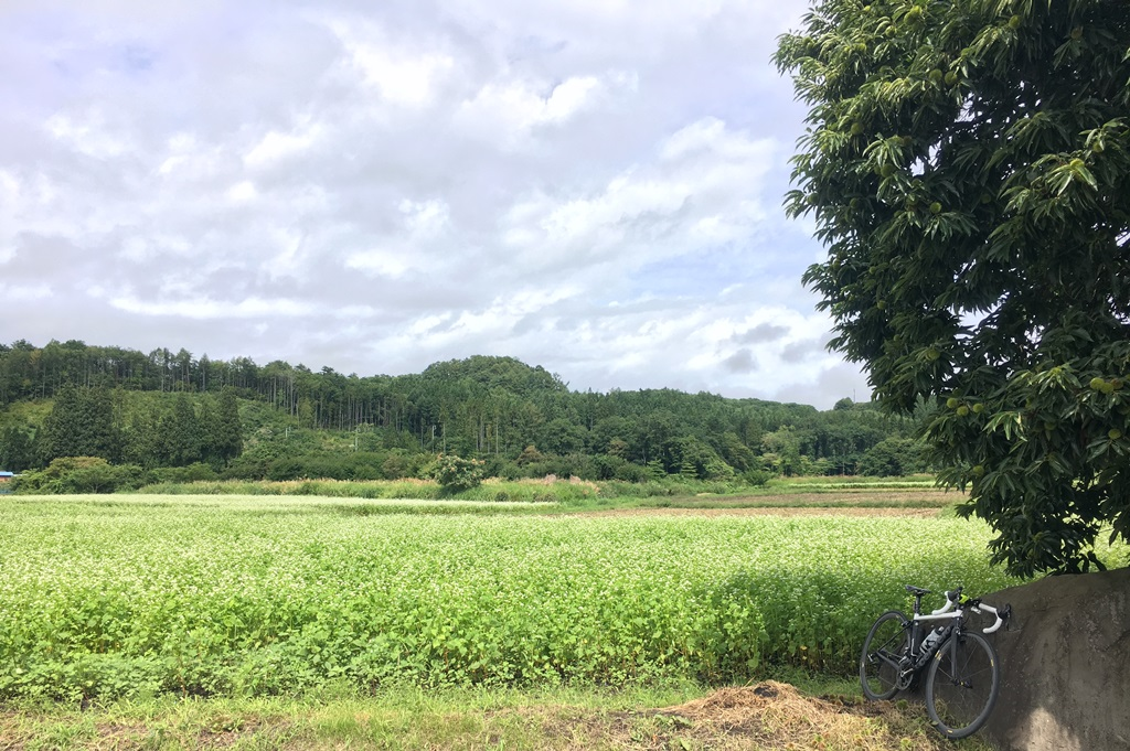 サマーソロライド 2017 vol.05 野尻湖