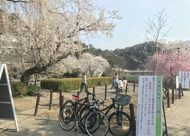スプリングソロライド 2020 vol.07 桜ラン&ライド